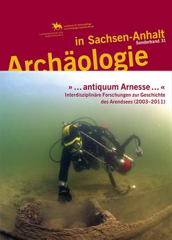 »…antiquum Arnesse…«. Interdisziplinäre Forschungen zur Geschichte des Arendsees (2003–2011) (Archäologie in Sachsen Anhalt / Sonderband 31) von Leineweber,  Rosemarie, Meller,  Harald