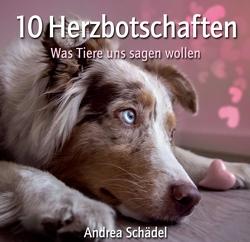 10 Herzbotschaften von Schädel,  Andrea