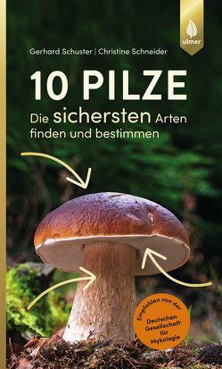 10 Pilze von Schneider,  Christine, Schuster,  Gerhard