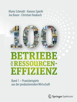 100 Betriebe für Ressourceneffizienz – Band 1 von Bauer,  Joa, Haubach,  Christian, Institute for Industrial Ecology INEC, Schmidt,  Mario, Spieth,  Hannes