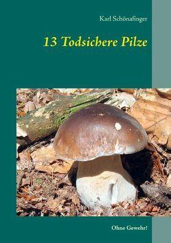 13 Todsichere Pilze von Schönafinger,  Karl