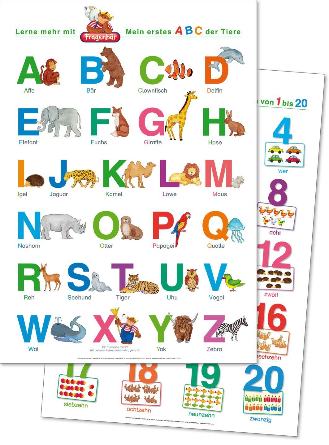 20 Fragenbär Lernposter Mein erstes ABC der Tiere + Zahlen und Mengen