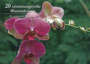 20 stimmungsvolle Blumenkarten