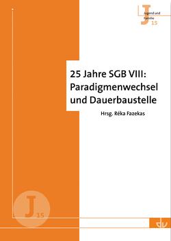 25 Jahre SGB VIII: Paradigmenwechsel und Dauerbaustelle von Fazekas,  Réka