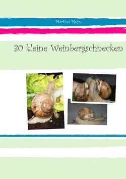30 kleine Weinbergschnecken von Meyn,  Martina