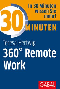 30 Minuten 360° Remote Work von Hertwig,  Teresa