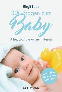 300 Fragen zum Baby von Laue,  Birgit