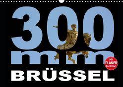 300mm – Brüssel (Wandkalender 2019 DIN A3 quer) von Bartruff,  Thomas