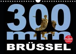 300mm – Brüssel (Wandkalender 2019 DIN A4 quer) von Bartruff,  Thomas