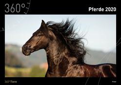 360° Pferde Kalender 2020 von Sarti,  Alessandra