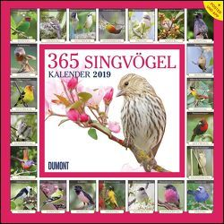 365 Singvögel 2019 – Broschürenkalender – Wandkalender – mit Poster und Sound-App – Format 30 x 30 cm von DUMONT Kalenderverlag
