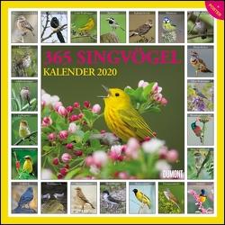 365 Singvögel 2020 – Broschürenkalender – Wandkalender – mit Poster und Sound-App – Format 30 x 30 cm von DUMONT Kalenderverlag