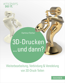 3D-Drucken…und dann? von Rother,  Hartmut