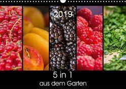 5 in 1 – aus dem Garten (Wandkalender 2019 DIN A3 quer) von Neuner,  Harald, Neuner-Gyß,  Petra