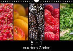 5 in 1 – aus dem Garten (Wandkalender 2019 DIN A4 quer) von Neuner,  Harald, Neuner-Gyß,  Petra