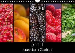 5 in 1 – aus dem Garten (Wandkalender 2020 DIN A4 quer) von Neuner,  Harald, Neuner-Gyß,  Petra