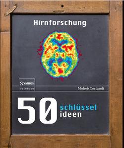 50 Schlüsselideen Hirnforschung von Costandi,  Moheb, Niehaus-Osterloh,  Monika