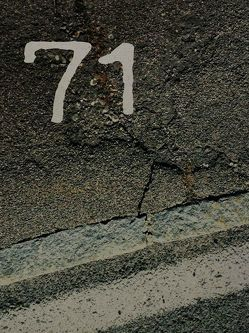 71 oder der Fluch der Primzahl von Kleinl,  Siegmund, Wägner,  Peter