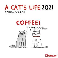 A Cat's Life 2021 – Wand-Kalender – Broschüren-Kalender – 30×30 – 30×60 geöffnet – Katzen von Correll,  Gemma