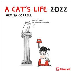 A Cat's Life 2022 – Wand-Kalender – Broschüren-Kalender – 30×30 – 30×60 geöffnet – Katzen von Correll,  Gemma
