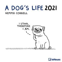 A Dog's Life 2021 – Wand-Kalender – Broschüren-Kalender – 30×30 – 30×60 geöffnet – Hunde von Correll,  Gemma