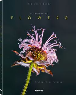 A Tribute to FLOWERS, Hardcover version von Fischer,  Richard