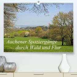 Aachener Spaziergänge durch Wald und Flur (Premium, hochwertiger DIN A2 Wandkalender 2020, Kunstdruck in Hochglanz) von Braunleder,  Gisela