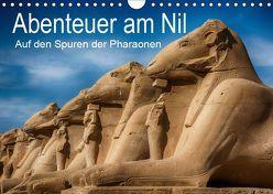 Abenteuer am Nil. Auf den Spuren der Pharaonen (Wandkalender 2019 DIN A4 quer) von Wenske,  Steffen