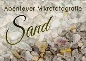 Abenteuer Mikrofotografie Sand (Wandkalender 2021 DIN A2 quer) von Becker,  Silvia