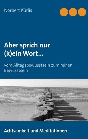 Aber sprich nur (k)ein Wort… von Kürlis,  Norbert