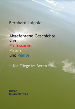 Abgefahrene Geschichte von Professoren, Pissern und Pianos – 1 Die Fliege im Bernstein von Luipold,  Bernhard