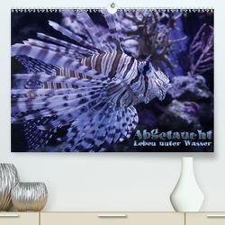 Abgetaucht – Leben unter Wasser (Premium, hochwertiger DIN A2 Wandkalender 2020, Kunstdruck in Hochglanz) von Hebbel-Seeger,  Andreas