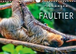 Abhängen – Faultier (Wandkalender 2019 DIN A4 quer) von Roder,  Peter