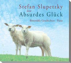 Absurdes Glück von Slupetzky,  Stefan