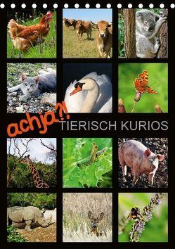 achja?! TIERISCH KURIOS (Tischkalender 2018 DIN A5 hoch) von Löwer,  Sabine