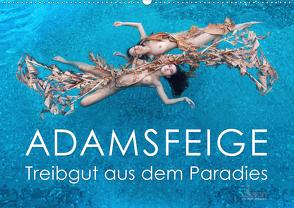 ADAMSFEIGE – Treibgut aus dem Paradies (Wandkalender 2020 DIN A2 quer) von Allgaier (www.ullision.de),  Ulrich