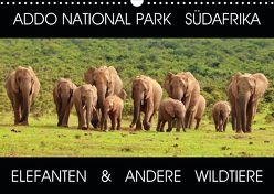 ADDO NATIONAL PARK SÜDAFRIKA – ELEFANTEN & ANDERE WILDTIERE (Wandkalender 2020 DIN A3 quer) von Fraatz,  Barbara