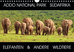 ADDO NATIONAL PARK SÜDAFRIKA – ELEFANTEN & ANDERE WILDTIERE (Wandkalender 2020 DIN A4 quer) von Fraatz,  Barbara
