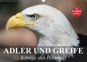 Adler und Greife. Könige des Himmels (Wandkalender 2016 DIN A3 quer) von Stanzer,  Elisabeth