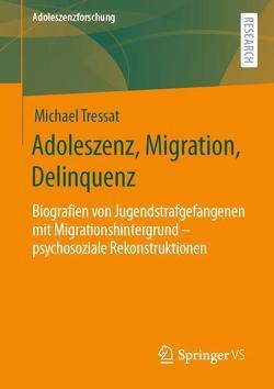 Adoleszenz, Migration, Delinquenz von Tressat,  Michael