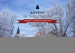 Advent im Triestingtal von Eigner-Kobenz,  Herbert, Handl,  Christian