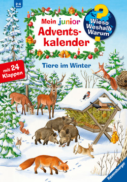 Adventskalender Tiere im Winter von von Hacht,  Esther