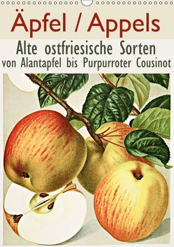 Äpfel/Appels. Alte ostfriesiache Sorten (Wandkalender 2019 DIN A3 hoch) von Galle,  Jost
