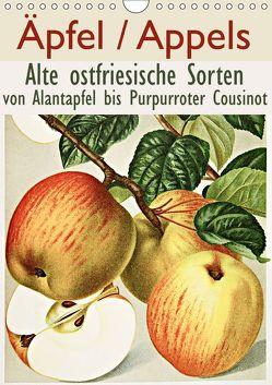 Äpfel/Appels. Alte ostfriesiache Sorten (Wandkalender 2019 DIN A4 hoch) von Galle,  Jost