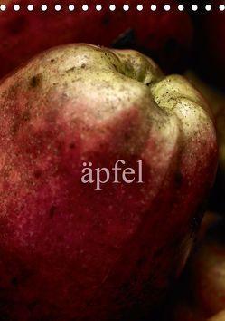 äpfel (Tischkalender 2019 DIN A5 hoch) von morgenstern,  arne