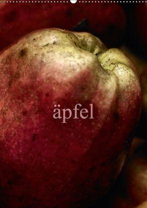 äpfel (Wandkalender 2018 DIN A2 hoch) von morgenstern,  arne