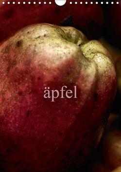 äpfel (Wandkalender 2019 DIN A4 hoch) von morgenstern,  arne
