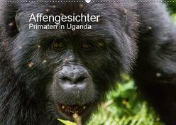 Affengesichter – Primaten in Uganda (Wandkalender 2019 DIN A2 quer) von Helmut Gulbins,  Dr.