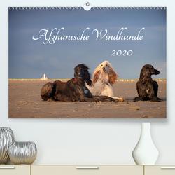 AFGHANISCHE WINDHUNDE 2020 (Premium, hochwertiger DIN A2 Wandkalender 2020, Kunstdruck in Hochglanz) von Mirsberger annettmirsberger.de,  Annett