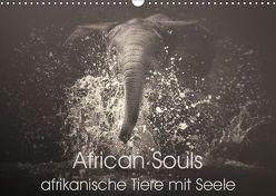 African Souls – afrikanische Tiere mit Seele (Wandkalender 2019 DIN A3 quer) von Kulpa,  Manuela